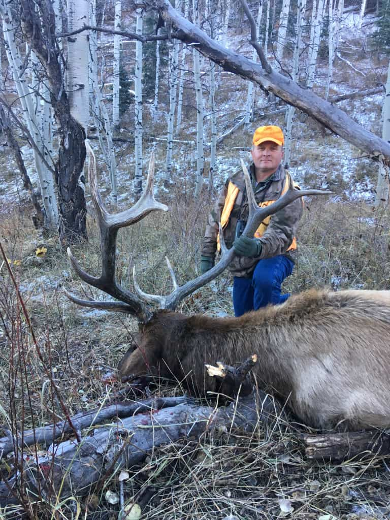 Elk Down Back