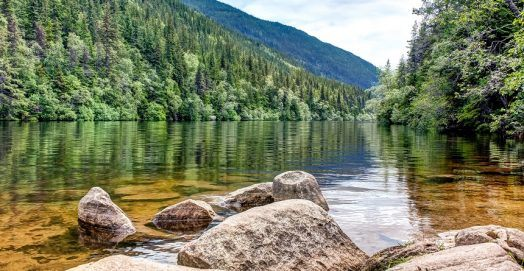 How to Purify Water in the Wilderness