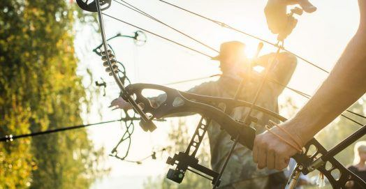 Best Compound Bow for Hunting Game