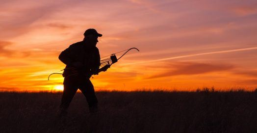 Best Recurve Bow for Hunting in the WIilderness
