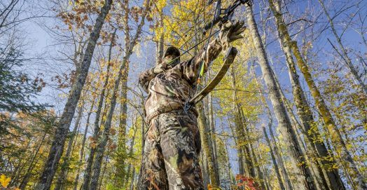 Best Bow Scope For Hunting
