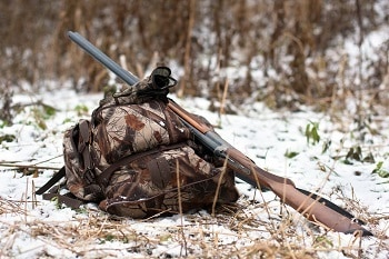 Shotgun Squirrel Hunting
