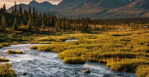 Alaska Fishing Spots