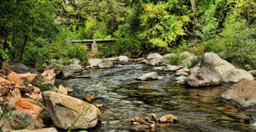 Best Places to Fish in Arizona