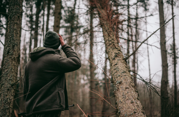 man looking on trees