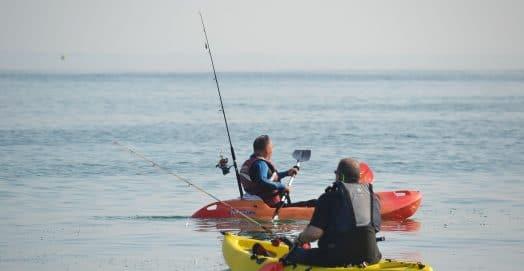 kayak-canoe-paddles-paddling